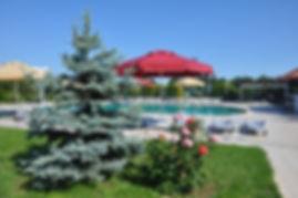Gümüşova Resort Hotel açık havuz