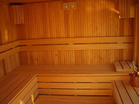 Gümüşova Resort Hotel sauna