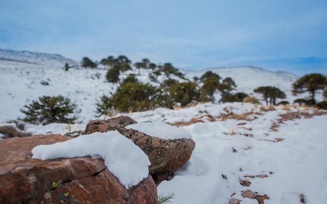 Nieve_invierno_Junin_efraíndavila-12.jpg