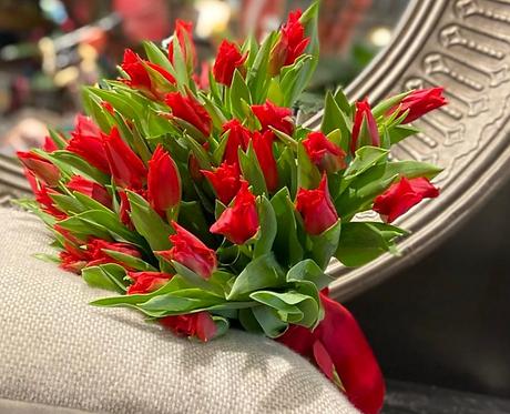Tulipani che passione!