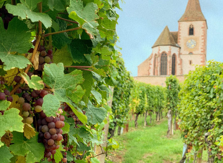 The Perfect Wine Weekend in Alsace