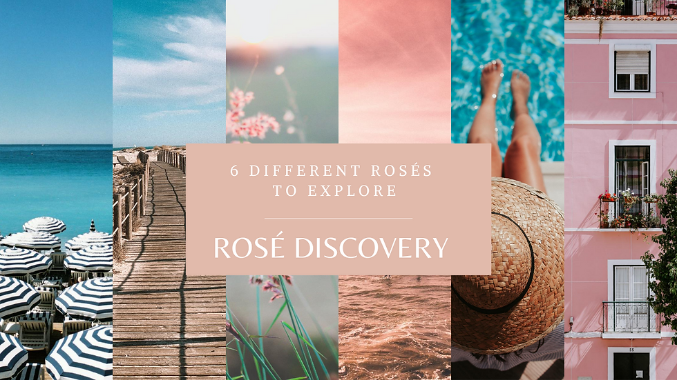 Rosé Discovery Case of 6