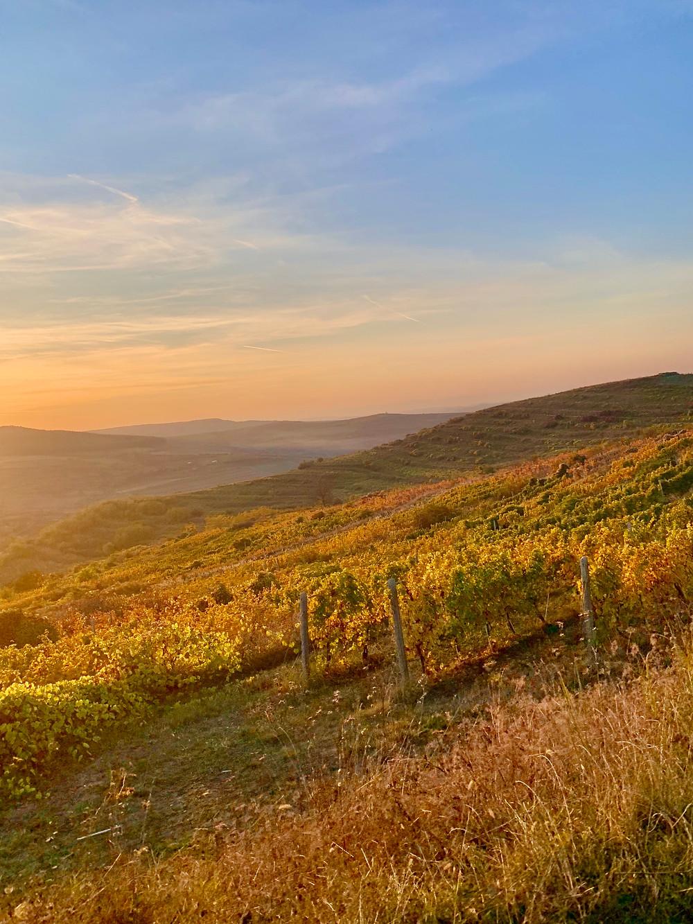 Stunning Scenery in Transylvania