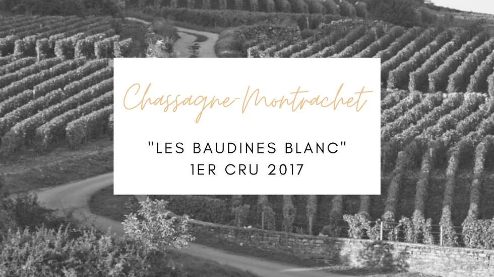 """Chassagne Montrachet, 1er Cru """"Les Baudines"""" Blanc, Domaine Guy Amiot, 2017"""