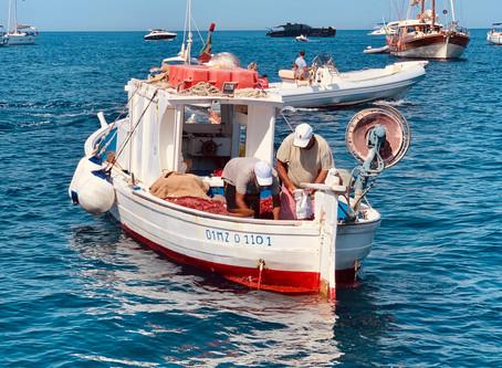 Recipes from Sicily: Tonno all'Eoliana - Aeolian-style Marinated Tuna with Capers & Fresh Tomato