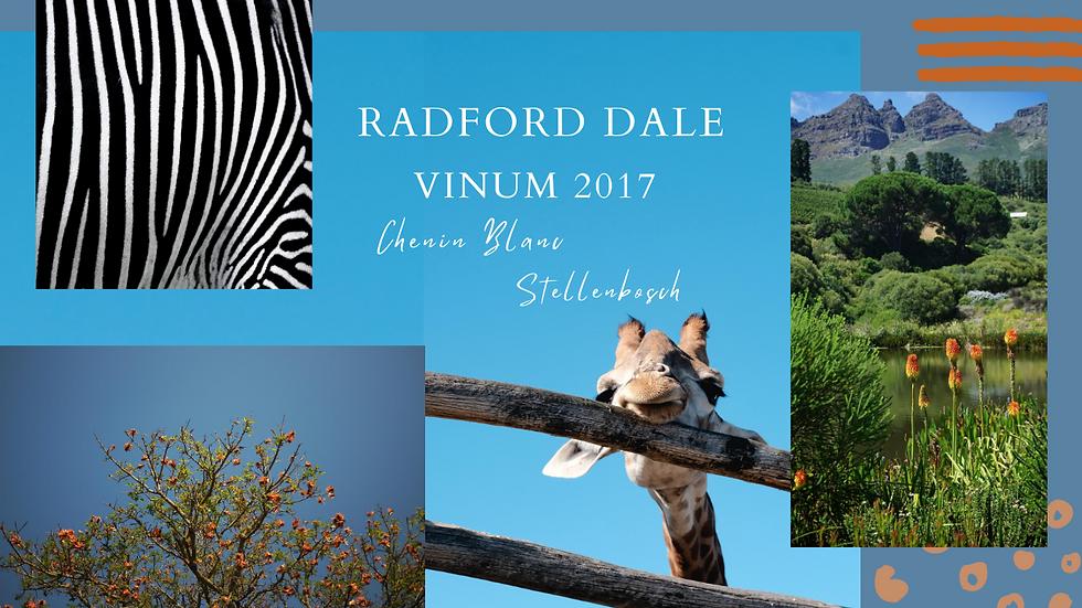 Radford Dale Vinum Chenin Blanc, Stellenbosch, South Africa, 2017