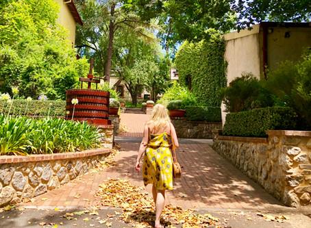 Wonder at Yalumba: 8 Reasons To Fall in Love