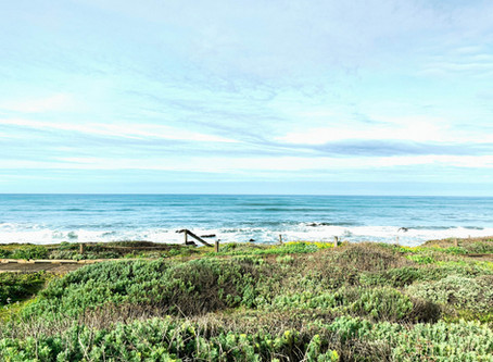 Wine Hippy: Plan a California Road Trip