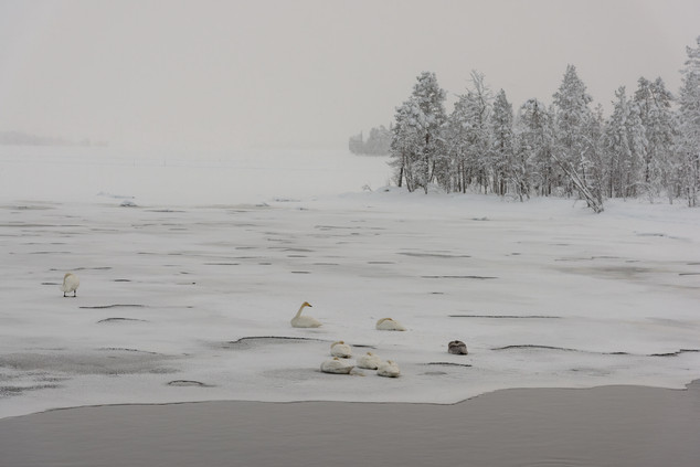 Lapland, Finland