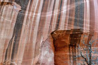 Desert Varnish, Long Canyon, Utah