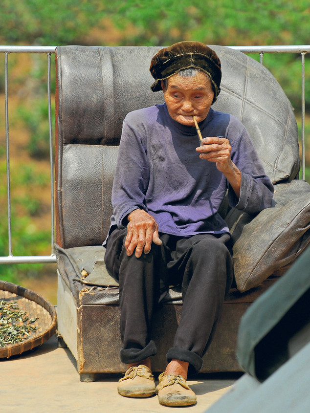 Grandmother in a puer tea farm near Jinghong, Xishuangbanna