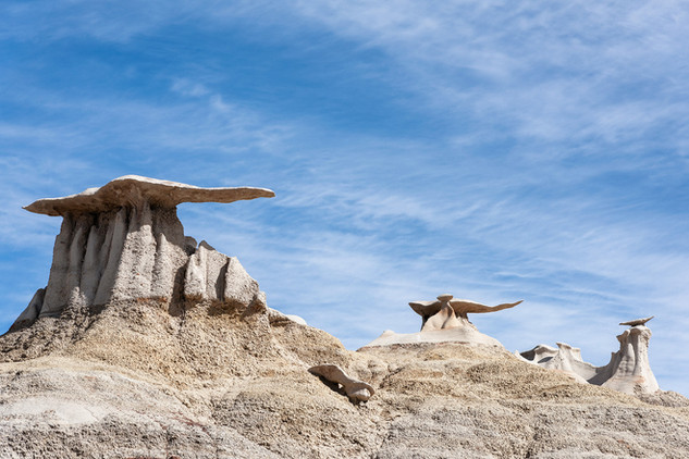 The Wings, Bisti Badlands, New Mexico
