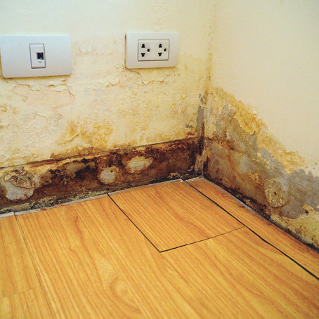 Hidden Dangers of Water Damage