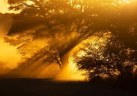 SunriseDust.jpg