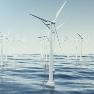 DeRisking Ocean Investments