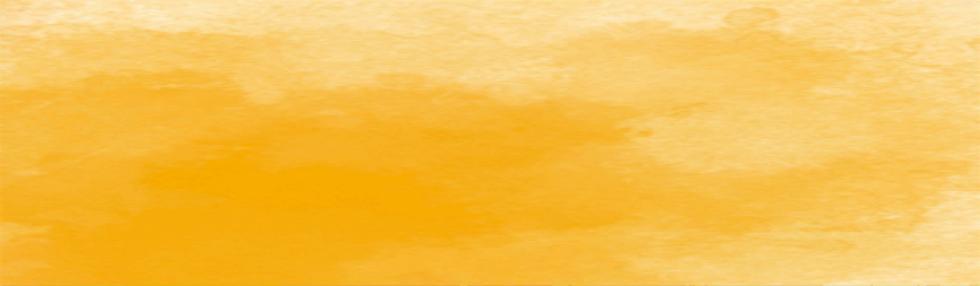 オレンジバック.png
