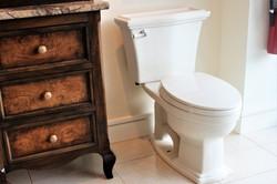 ToiletDarkwood
