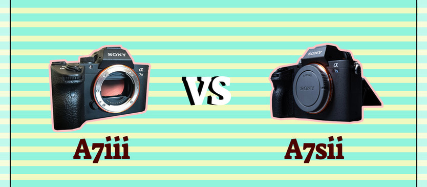 3 reasons to think the A7sii is better for wedding filmmakers than the A7iii