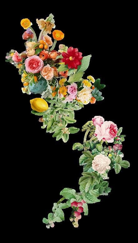 CURI E AMURI_fiori-022-02.png
