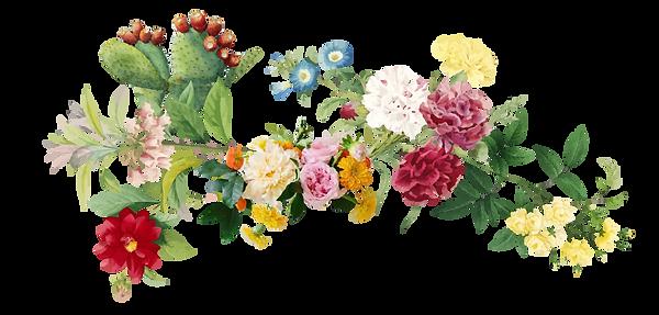 fiori-04.png