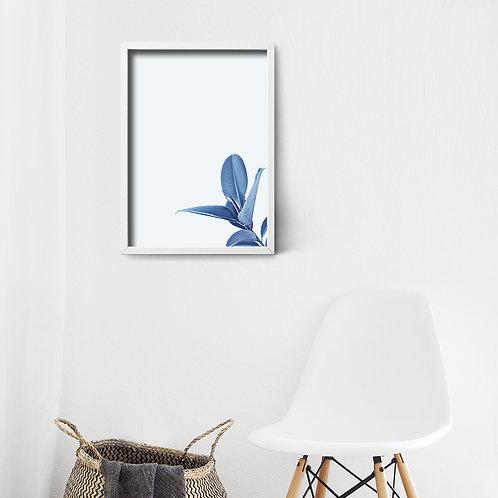Action Zebra | Blue flower