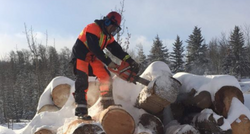 Wood for Warmth, Community Success