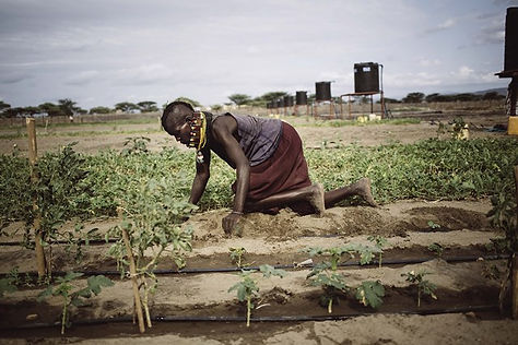 Greenpeace: woman in the field