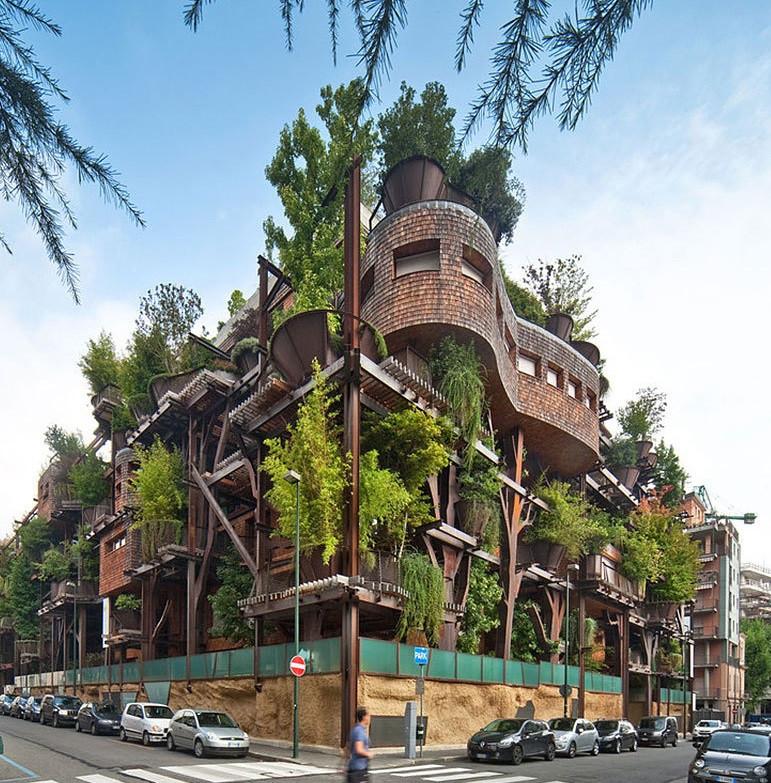 arbre-immeuble2.jpg