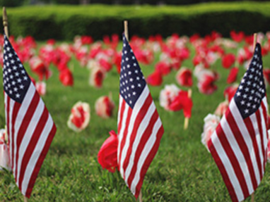 With Honor and Gratitude to Our Armed Forces on Memorial Day
