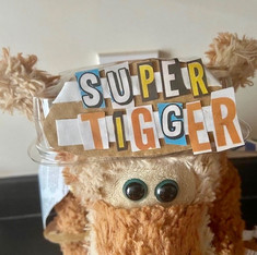 Sophies Tigger Competition Winner
