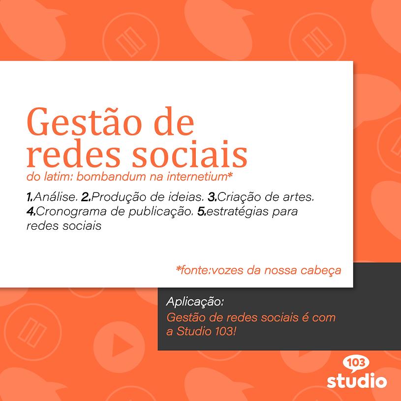 Studio_103_Gestao_Dicionario.png