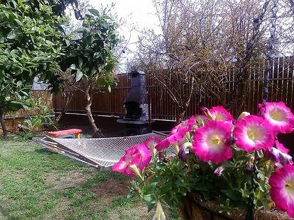 סוויטה במצל הגפן -ערסל בגינה.jpg