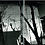 Thumbnail: Masahisa Fukase,Hysteric Twelve
