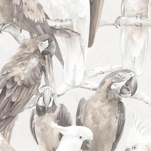 Parrots Grey/Beige