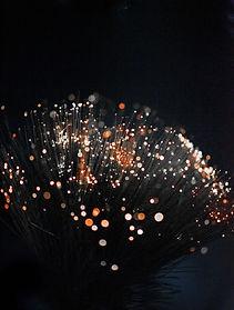 macro-photography-of-orange-fiber-optic-