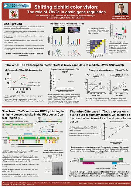 ICN2018 Poster_edited.jpg
