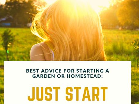 Suburban Backyard Garden for Beginners