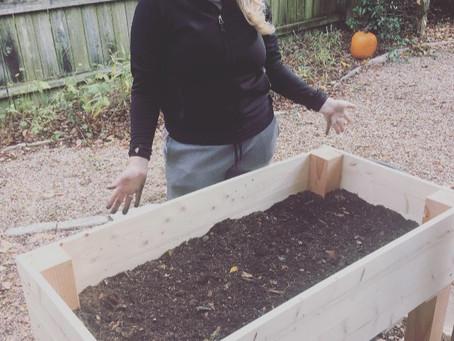 How To Build a Backyard Planter Box
