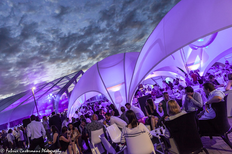 event organisator / party planner / weddingplanner - Pascale Engelen - Hasselt - Corporate evens