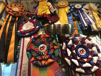 We have a special room full of rosettes