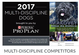 NEW Nomination _CKC Top Dogs 2017 in a M