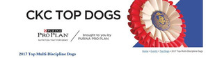 CKC _Canadian Kennel Club _ TOP DOGS 201