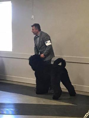 Makovey Black Russian Terrier