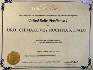 United Kennel Club - URO1 Black Russian Terrier Makovey