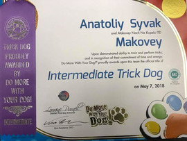 TRICK Title 2018 Makovey (Black Russian Terrier)