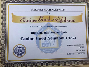 Canine Good Neighbour Test Makovey