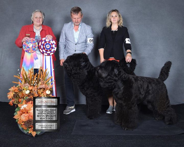 Specialty Show Black Russian Terrier 2018 Canada Judge  Timmy U. Ralfe (South Africa)