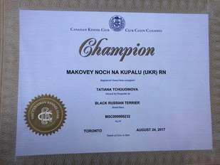 Black Russian Terrier Makovey Title CHAMPION