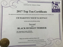 TOP TEN DOG  - UKC - United Kennel Club - Black Russian Terrier