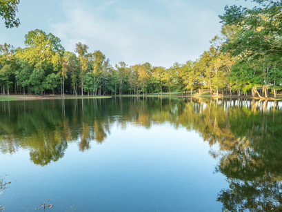 Finding The Ideal Photo Shoot Location in Charlotte, NC